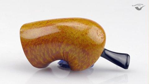 Stocky Nautilus