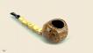 Long Bamboo Blowfish