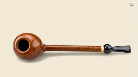 Longshank Acorn